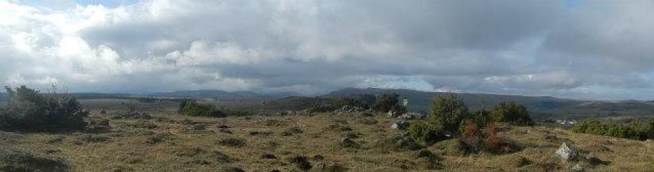 cropped-panorama2.jpg